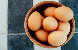 todos santos eggs
