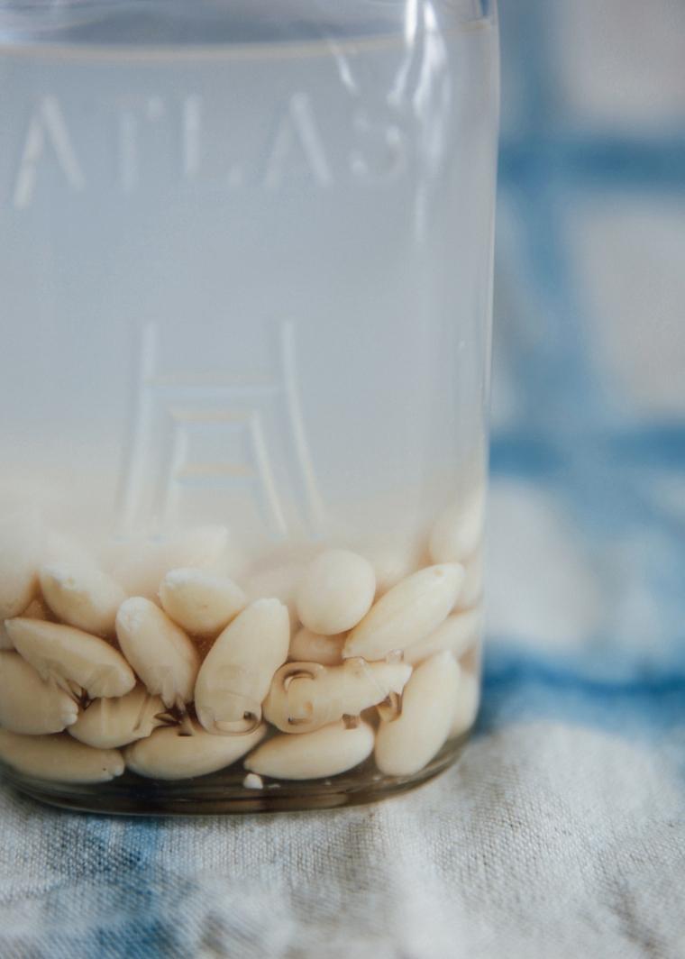 almond milk-2